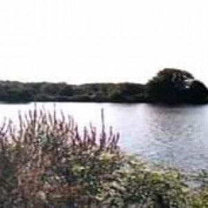 greenwich_lake_park_1 (1)